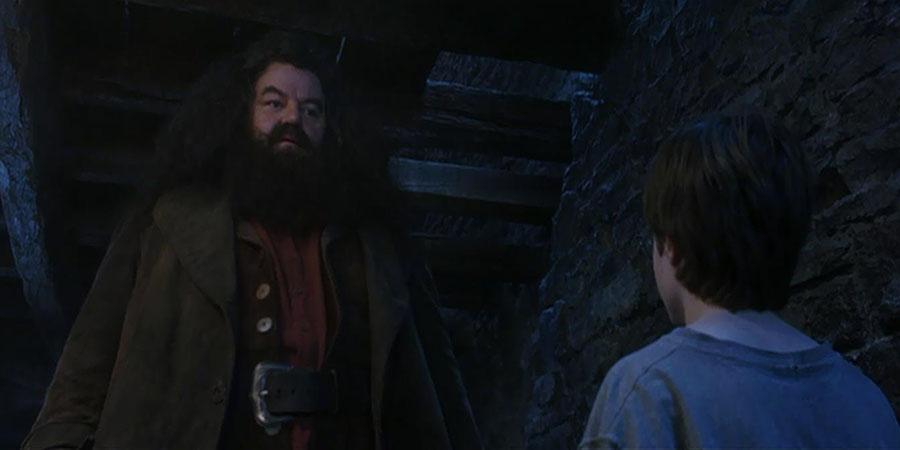 Hagrid Harry Potter'la ilk karşılaştığında ona ne verdi?