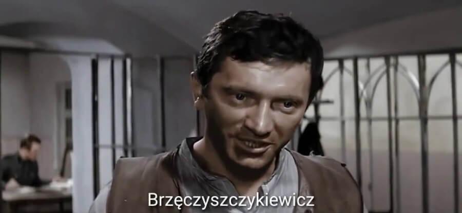 Bu bir polonca komedi dizisinden